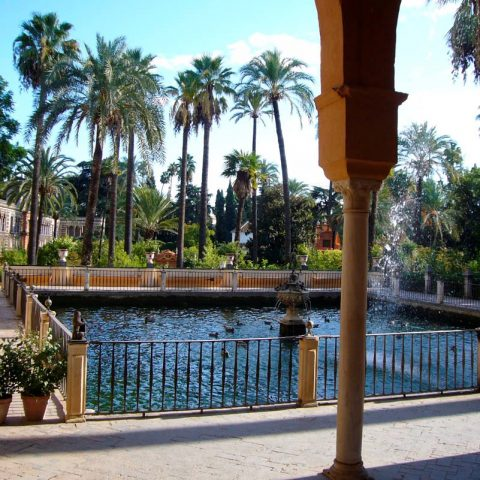 seville - language courses